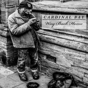 cardinal bay